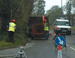 Tree surgeons in action in London.